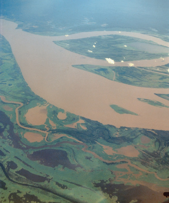 Alluvial islands downstream of Remanso Cape, middle of the Amazon