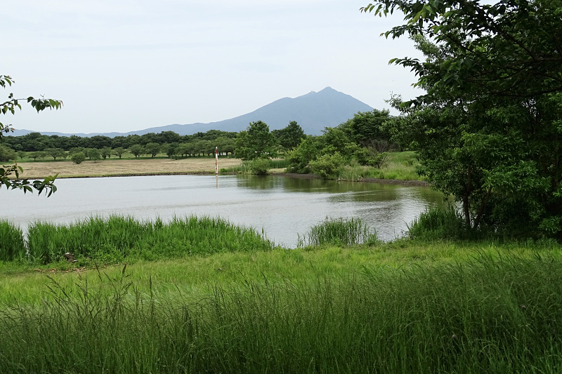 Primary water pond of the Hakojima Yusuichi